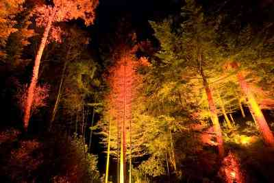 The Enchanted Forest Pitlochry, Scotland