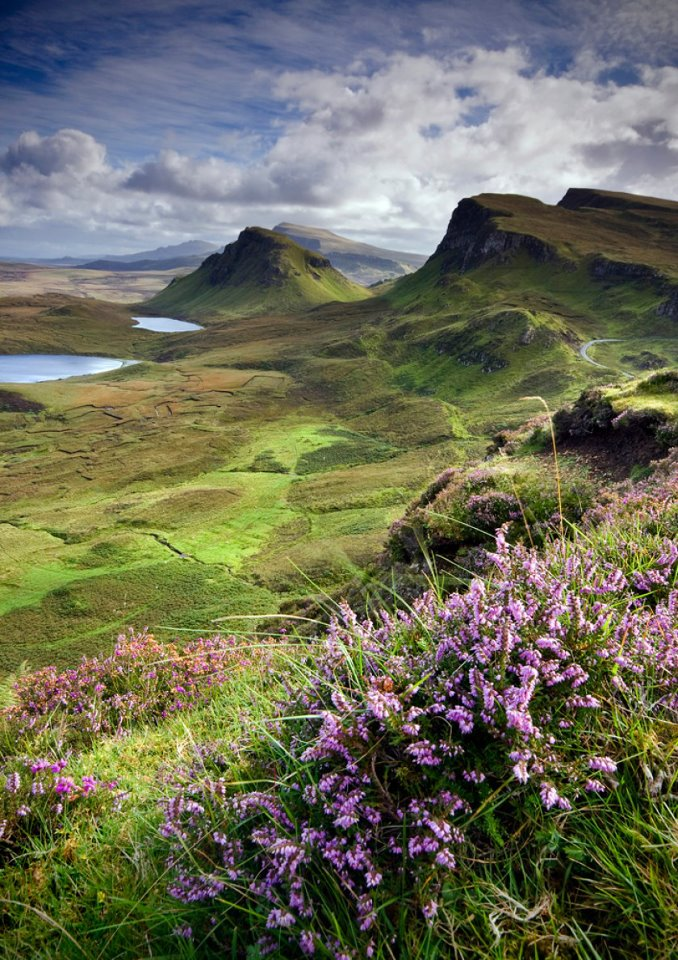 A Stunning Scottish View - My Bonnie Heather